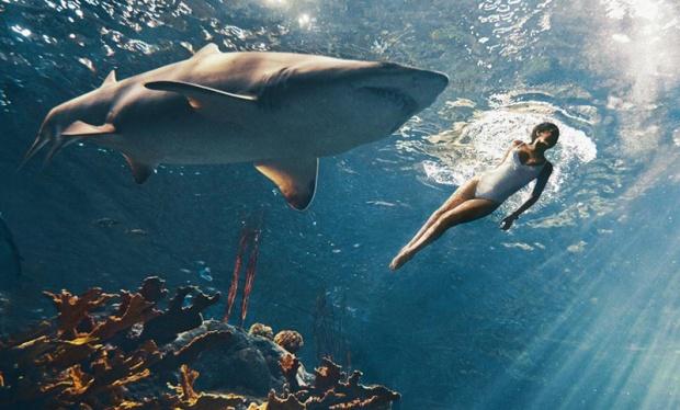Rihanna Swims With Sharks For 'Harper's Bazaar'