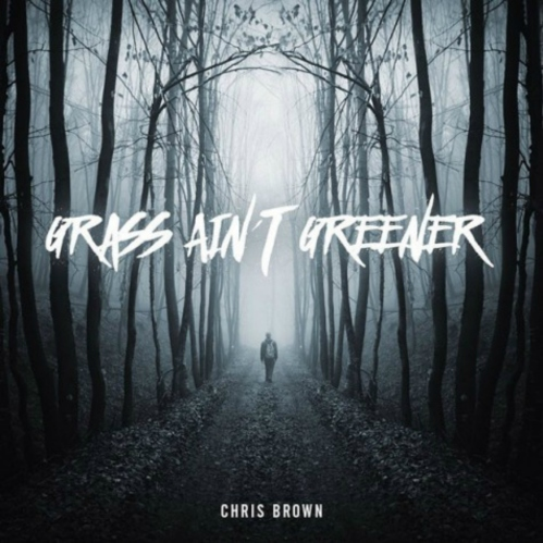 grass-aint-greener-475x475